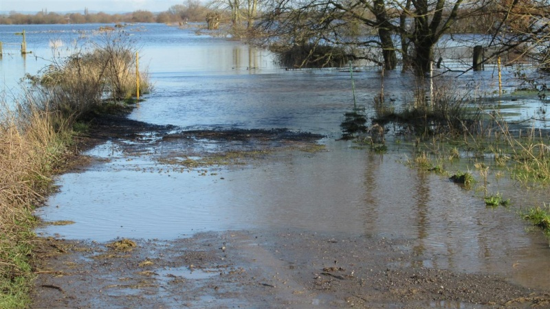 Floods!! Img_1411