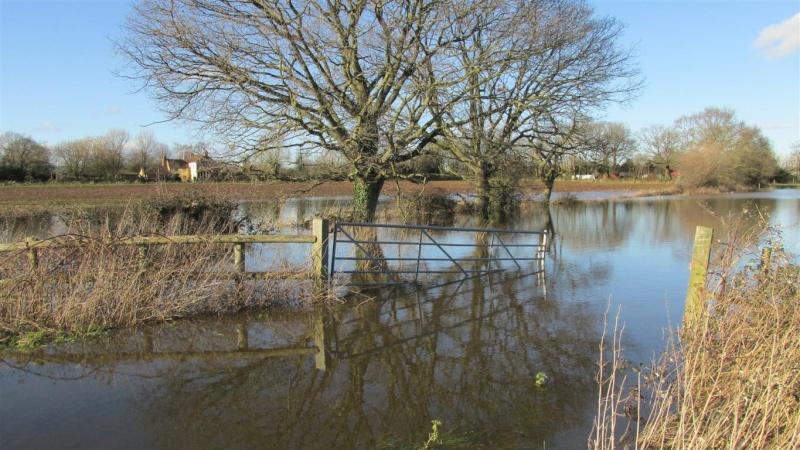 Floods!! Img_1413