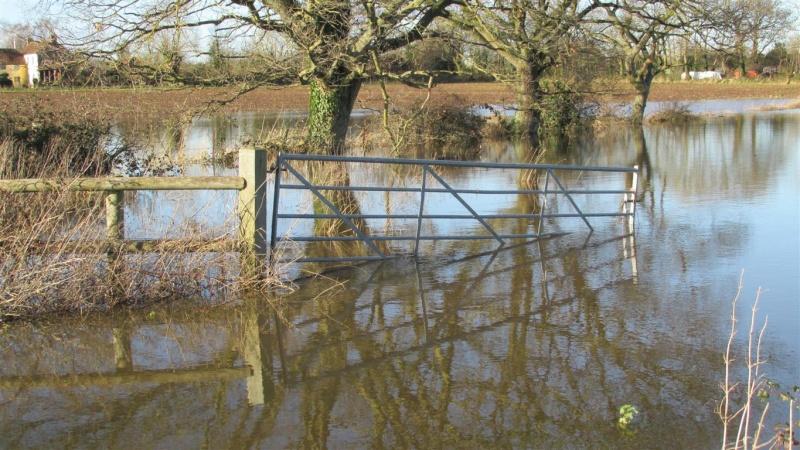 Floods!! Img_1414