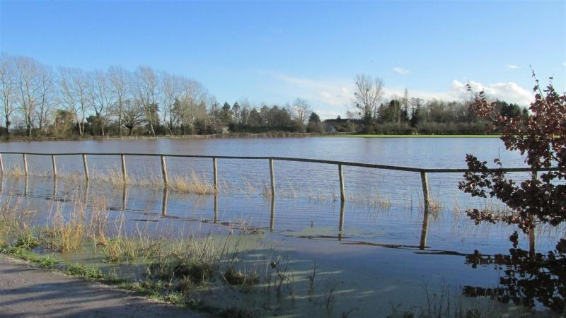 Floods!! Img_1415