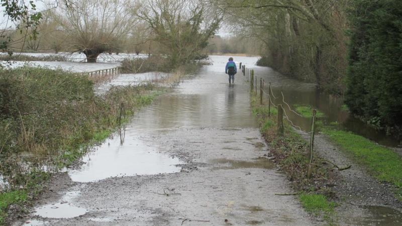 Floods!! Img_1420