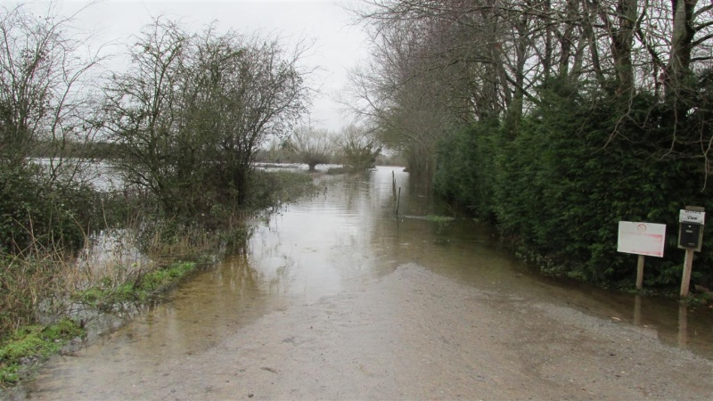 Floods!! Img_1423