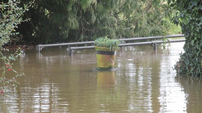 Floods!! Img_1512