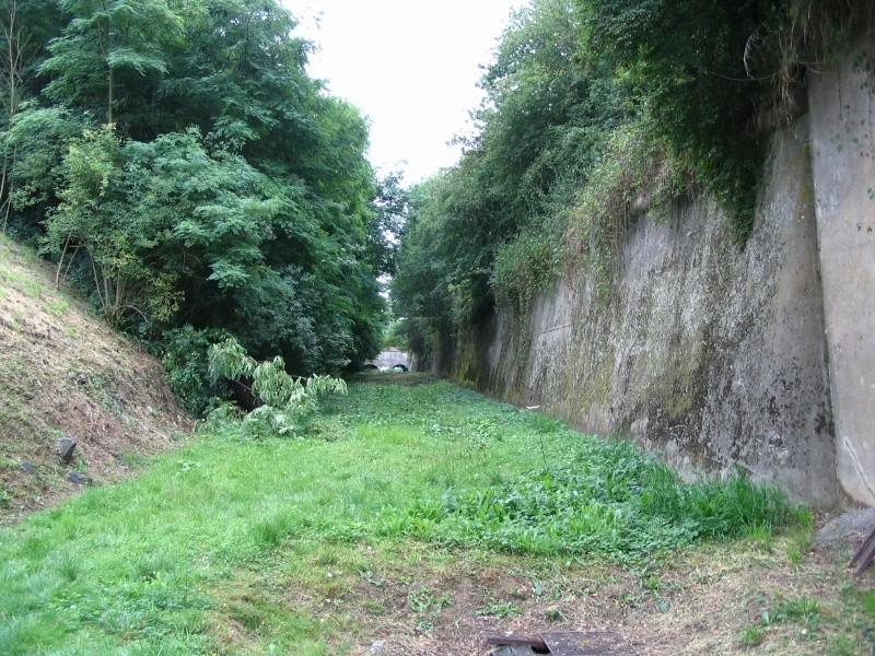 Le Fort de Hollogne (PFL) Fossa_14