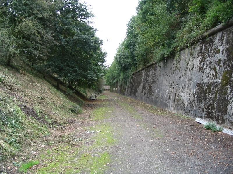 Le Fort de Lantin (PFL) Fossa_24