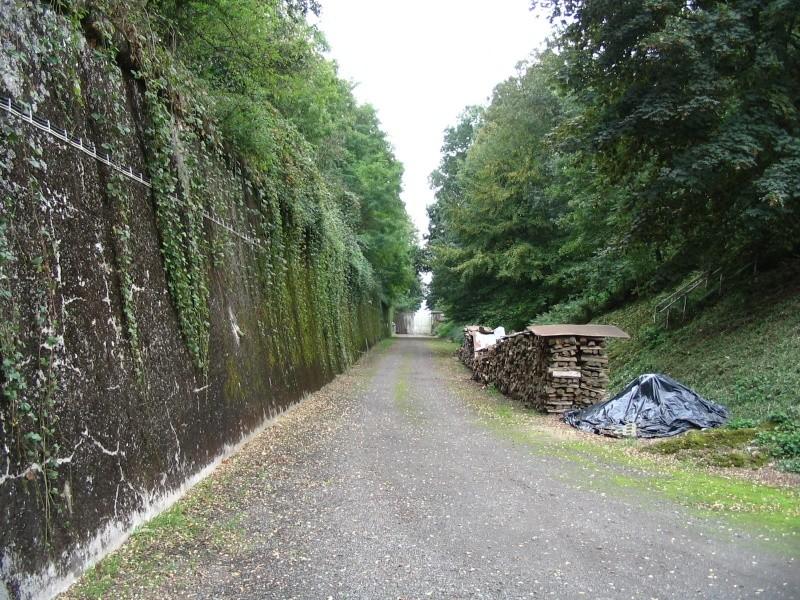 Le Fort de Lantin (PFL) Fossa_25