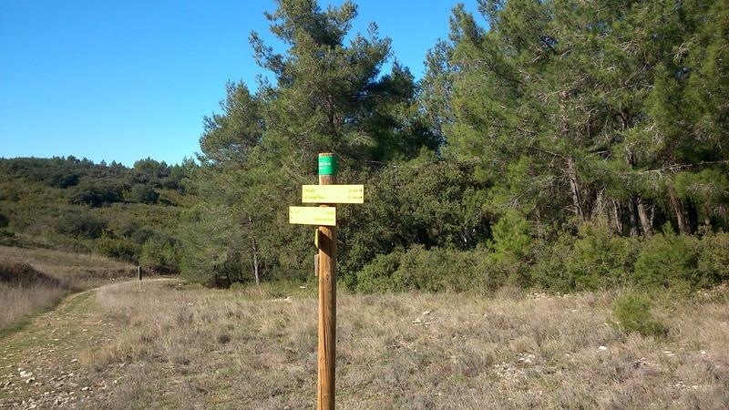 Balade Trail le 26 fevrier dans le Gard - Page 3 Dsc_0325