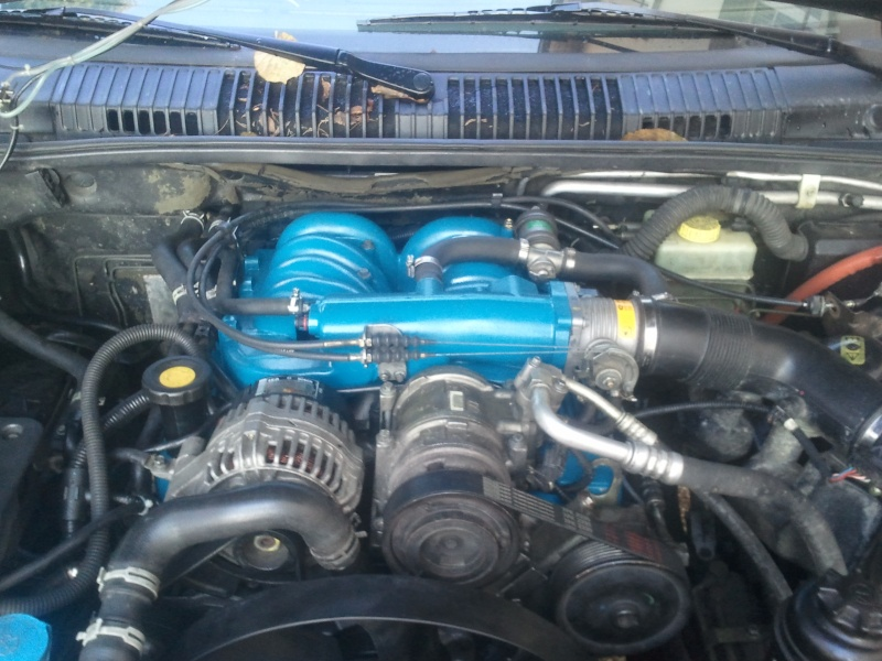 Cache courroie V8 Thor 2013-136