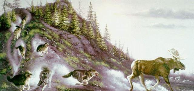 Волчий холм - Страница 5 Oaua_o10