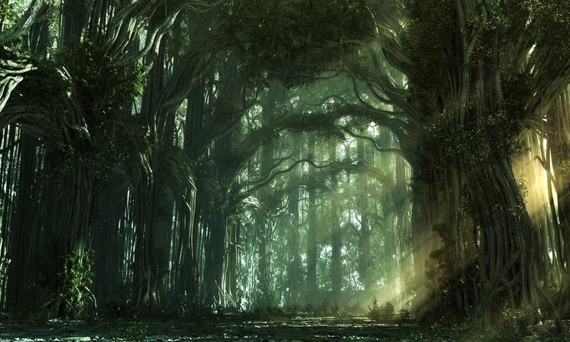 Деревья скорби Oeeeae11