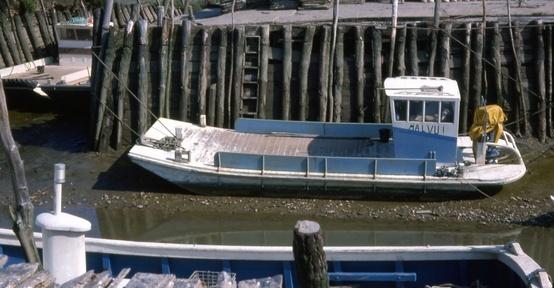 barca da pesca portoghese Cattur11