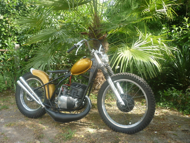 DTMX 250 custom ... P1140712