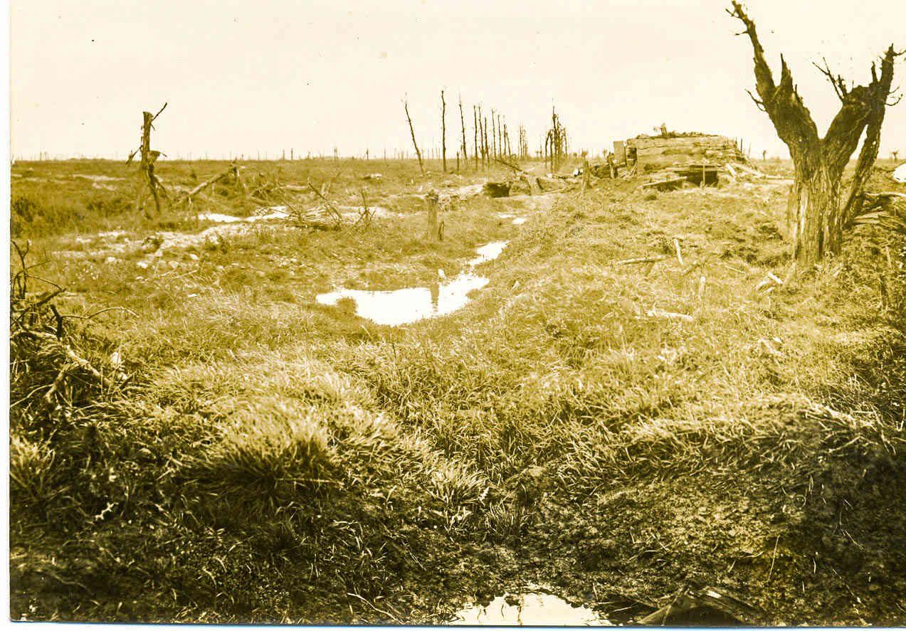 [Commémoration du Centenaire de la Première Guerre -Mondiale] - Page 3 02_mes10