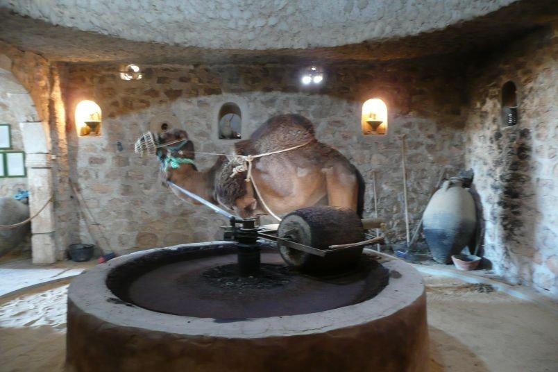 Musée du Patrimoine, Guellala à Djerba en Tunisie. 10390410