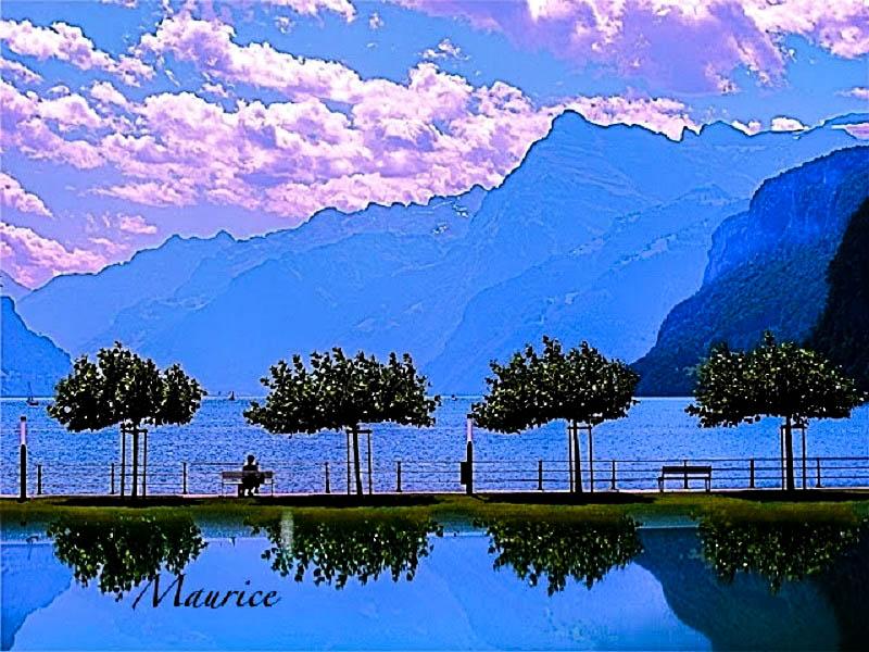 Brunnen-Ingenbohl, Lac des Quatre-Cantons, Suisse. 77230410