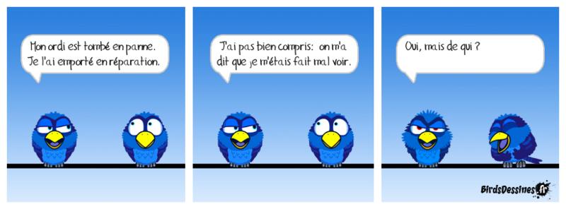 Les Birds - Page 15 Jojo8810