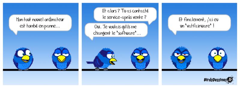 Les Birds - Page 15 Pierre10