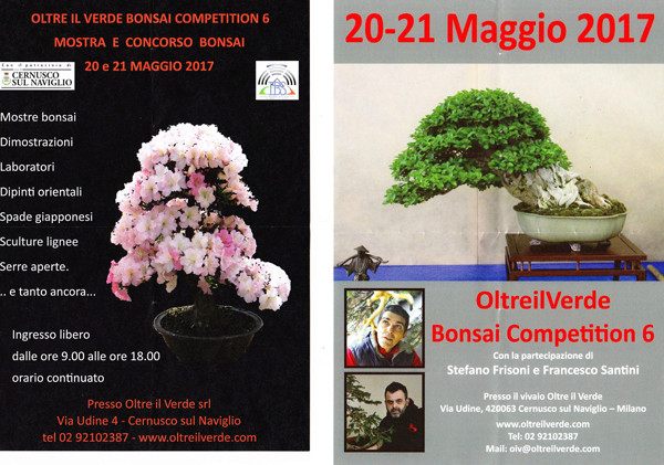 Oltre Il Verde - Bonsai Competition 6 Img_2023