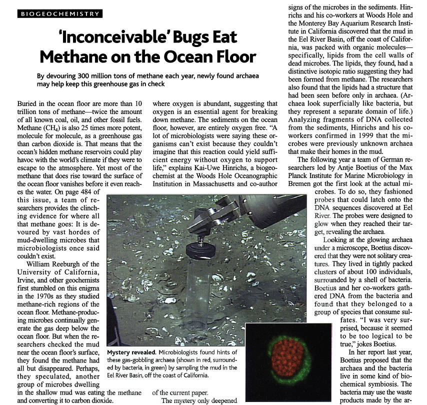 'Inconceivable' Bugs Eat Methane on the Ocean Floor Archea10