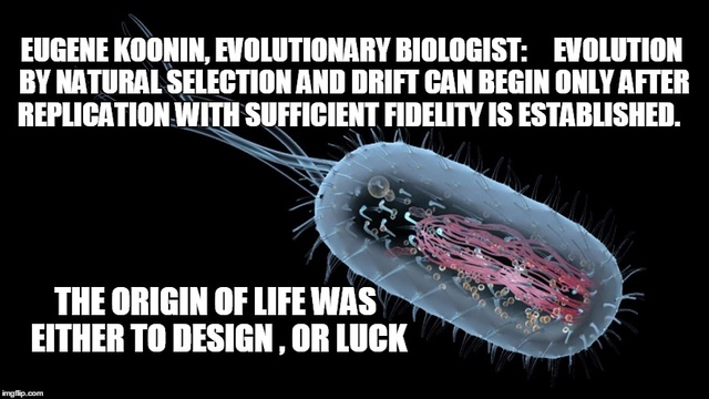 Does Intelligent Design / Creationism  require to be science to explain best our existence ?  Downlo20