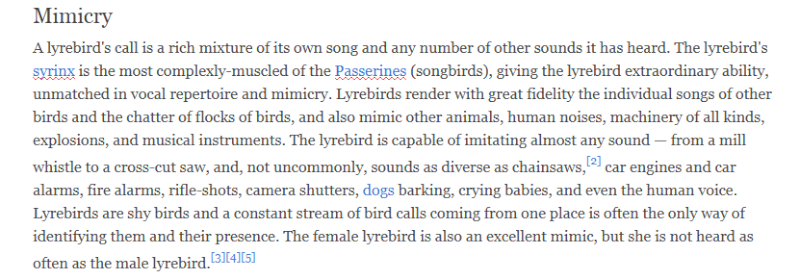 The superb Lyrebird  Edit_l10