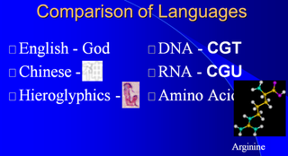 Origin of translation of the 4 nucleic acid bases and the 20 amino acids, and the universal assignment of codons to amino acids Kyu10d11