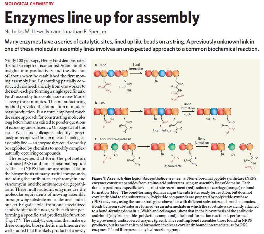 Iron Uptake and Homeostasis in Prokaryotic Microorganisms Non-ri10