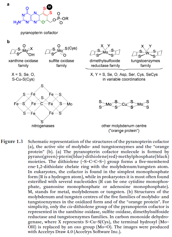 The nitrogen cycle, irreducible interdependence, and the origin of life Pyrano10