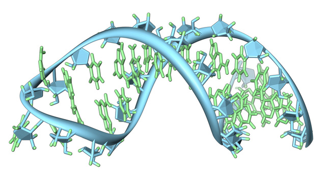 The impossibility of formation of RNA in a prebiotic world Rna10