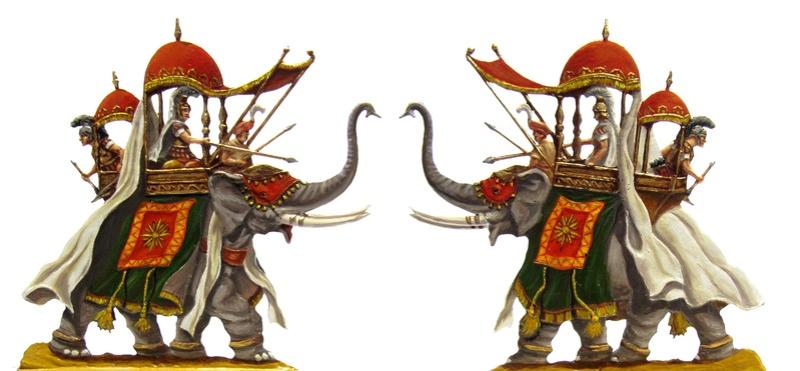 Elephants Alexan10