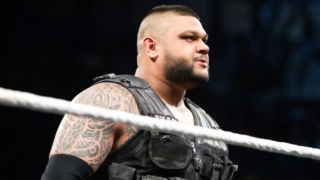 Concours de popularité de fin d'année 2018 (WWE) - Page 4 Sunny_10