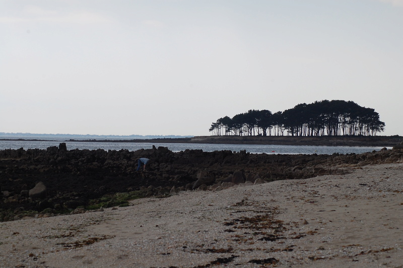 vacances bretonnes Dsc_0214