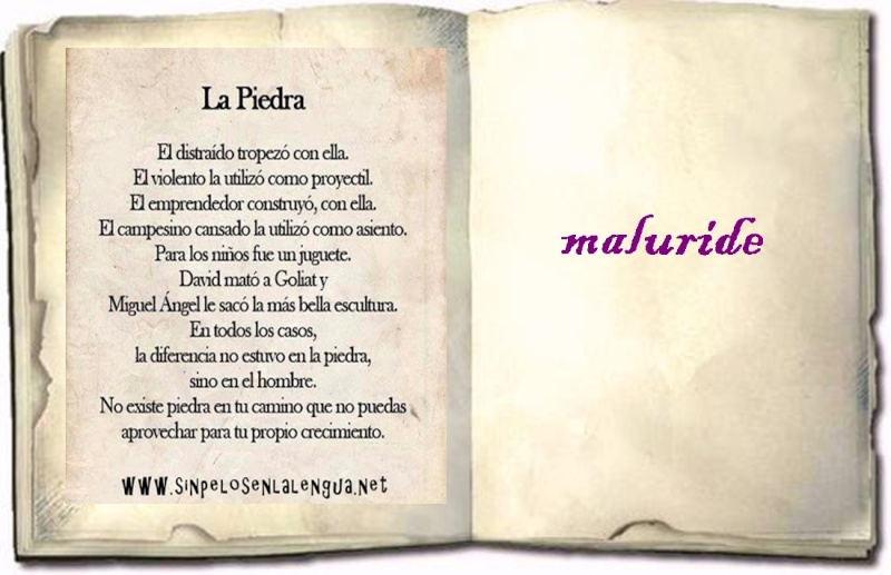 LIBRO DE FIRMAS Imagen26