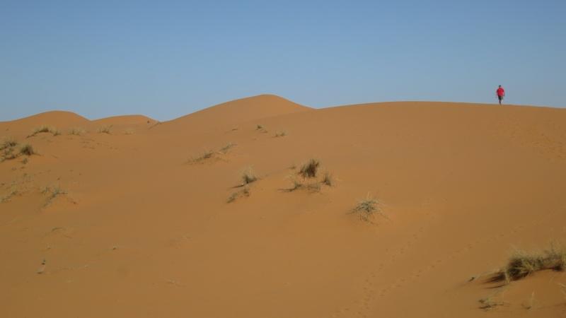 Voyage de printemps au Maroc  2014_m17