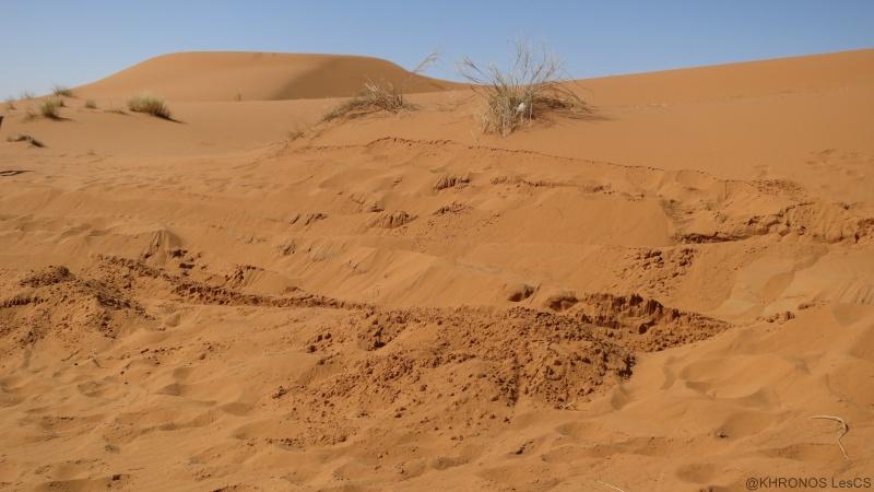 Voyage de printemps au Maroc  2014_m27