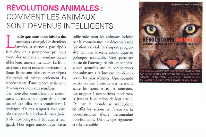 Comment les animaux sont devenus intelligents Articl11