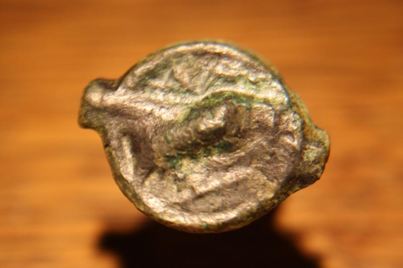 Bronze au taureau. Img_7618