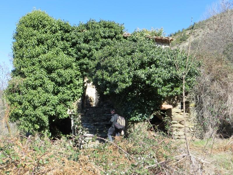 Puig des Maurous par Finestret Img_0120