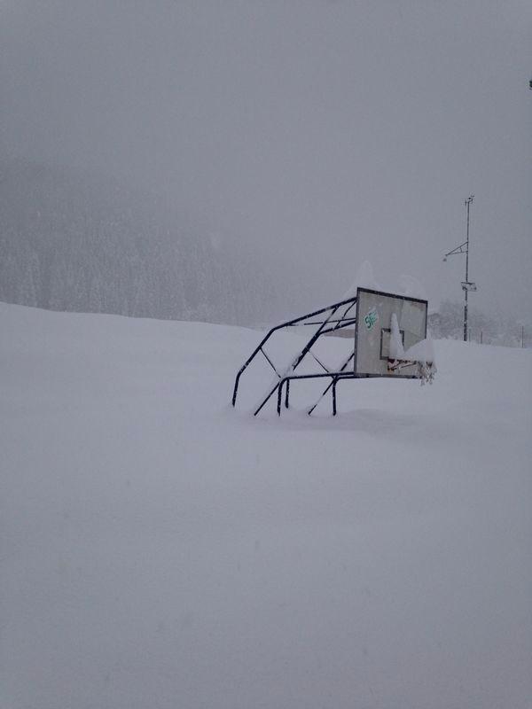 Bollettino antenne locali 2013/2014 - Pagina 4 72662_11