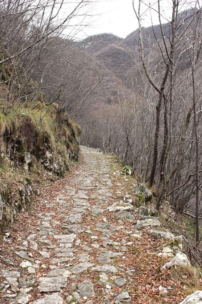 Canale del Brenta Dpp_2113