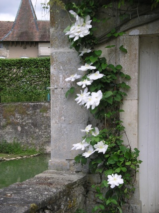 château et jardin d'Haroué (54) Imgp0192