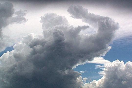 Dans le cloud. Elepha10