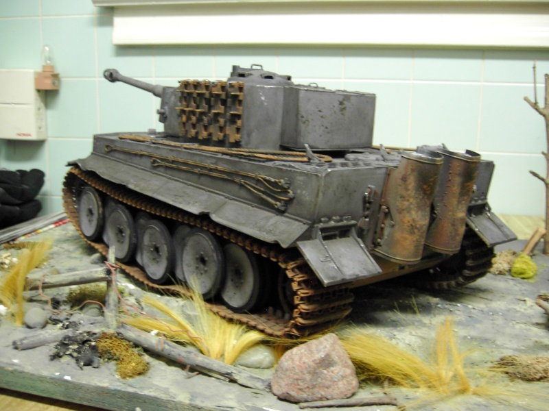 Re-Painting the WSN Tiger I Pdr_2846