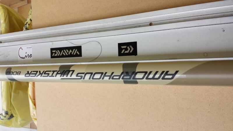 Daiwa amorphous whisker 7 mt mimetica 20140412