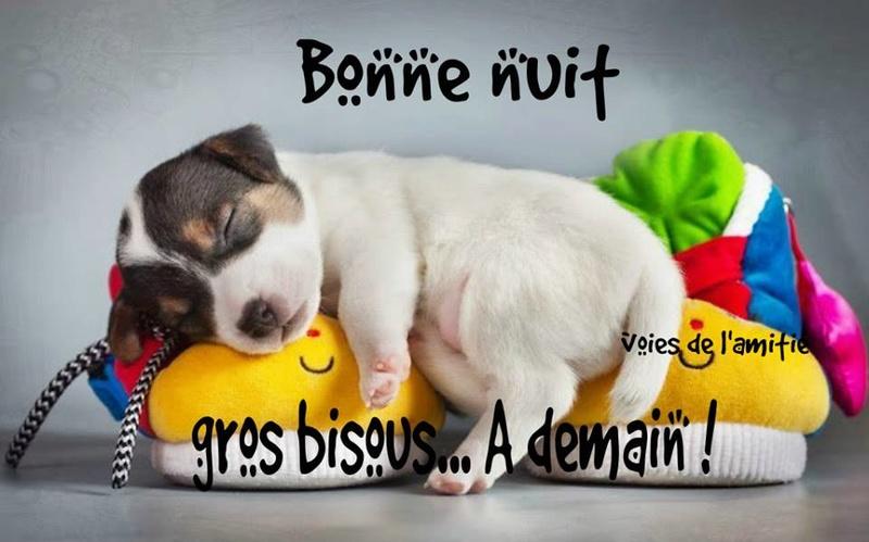 bonjour/bonsoir de Mai - Page 3 Bonne-10