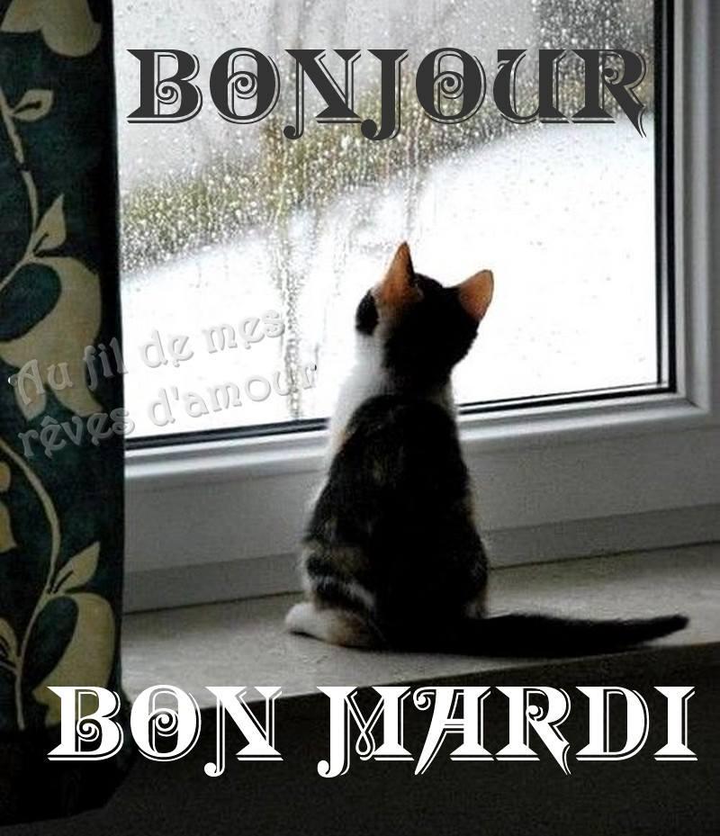 Bonjour/Bonsoir d'Avril  - Page 3 C1160a10