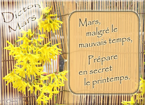 bonjour/bonsoir de Mars - Page 4 D745f310