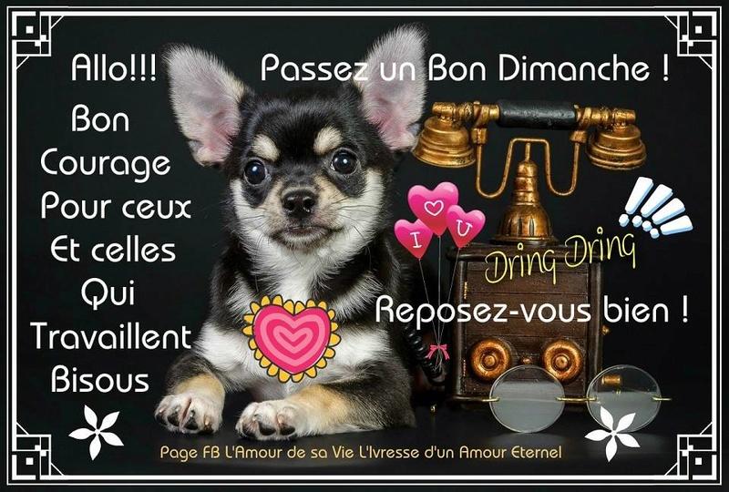 bonjour/bonsoir de Février - Page 3 Dimanc10