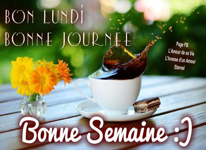 bonjour/bonsoir de Mars - Page 3 Lundi_12