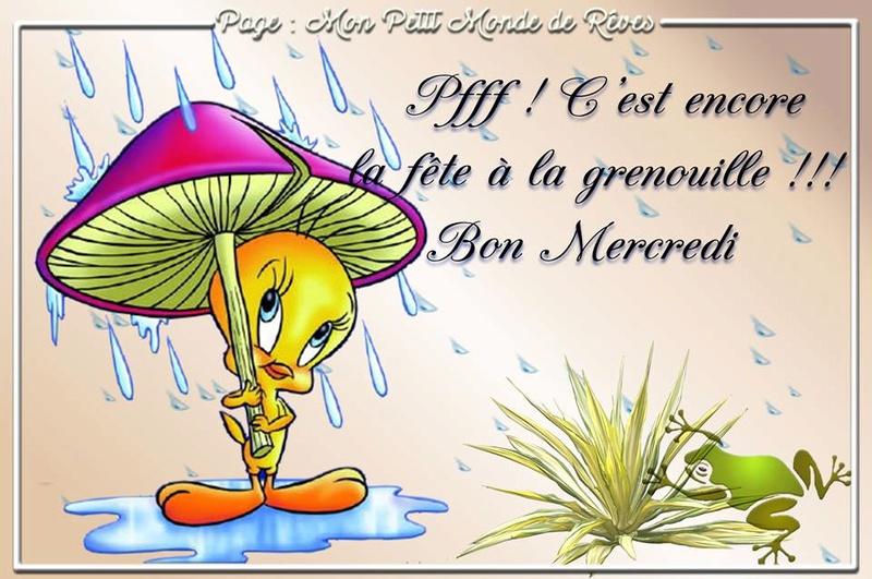 bonjour/bonsoir de Mars - Page 3 Mercre10